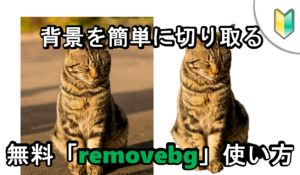 「背景」を自動切り取り。無料で使える画像編集サービス「removebg」は超便利。