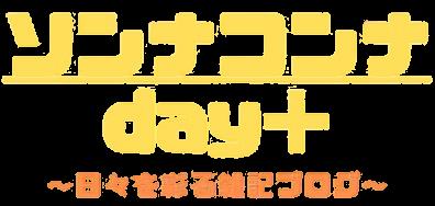 ソンナコンナ day+